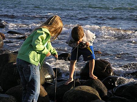 Axel fiskar krabbor - ivrigt